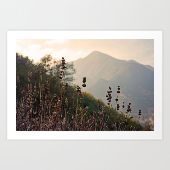 Ojai Mighty Mountain California Shine Art Print