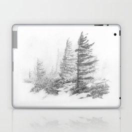 Bear Rocks in Fog Laptop & iPad Skin