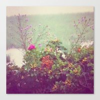 cape cod Canvas Prints featuring Cape Cod by Antha P