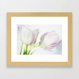 Gentle Touch Framed Art Print
