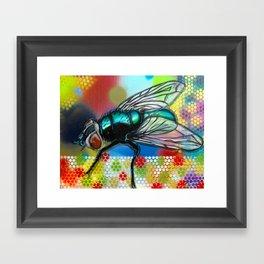 Fly 1 Framed Art Print