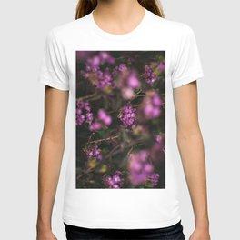 Trailing Lantana Flower Printable Wall Art | Floral Plant Botanical Nature Outdoors Macro Photography Print T-shirt