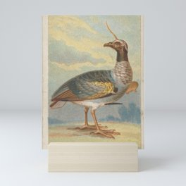 Horned Screamer, from the Birds of the Tropics series (N5) for Allen & Ginter Cigarettes Brands,1889 Mini Art Print