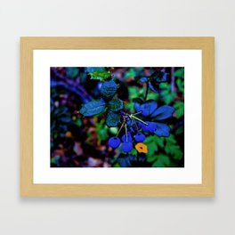 Exotic fruit and rich. Framed Art Print