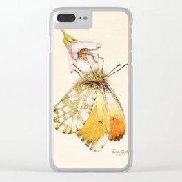 Aurorafalter butterfly Clear iPhone Case