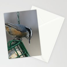 Red-breasted Nuthatch Stationery Cards