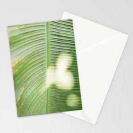 The green leaf | Monteverde Costa Rica fine art travel photography | Botanical Stationery Cards