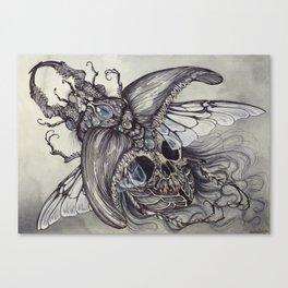 Memento Lucanidae Canvas Print