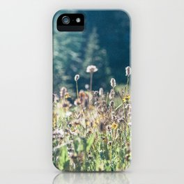 FALL FIELDS | 01 iPhone Case