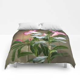 Spade's Desert Rose Comforters