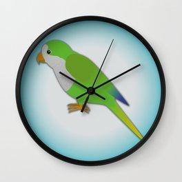 A quaker parrot Wall Clock