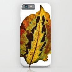 Fall Leaf iPhone 6s Slim Case