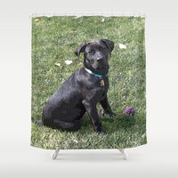 lab Shower Curtains featuring Black Lab by Sierra LaFrance