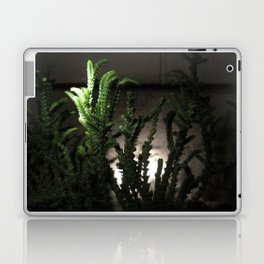 Nighttime in the Garden, 6 Laptop & iPad Skin