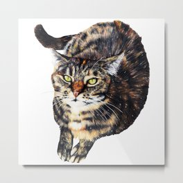 Kitty Cat Chili Metal Print