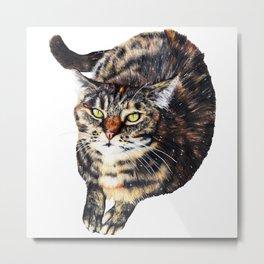 Kitty Cat Chili Metal Print