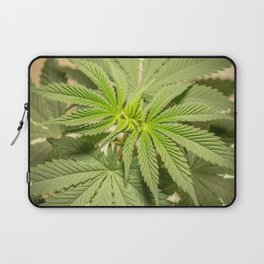 Top of the Clone Laptop Sleeve