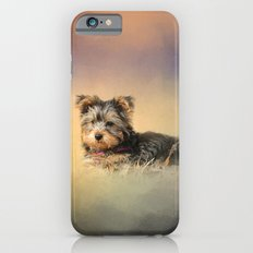 Loving the Leaves - Yorkshire Terrier Puppy Slim Case iPhone 6
