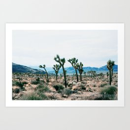 Outer South Art Print