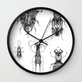 Entomologic Bones Wall Clock
