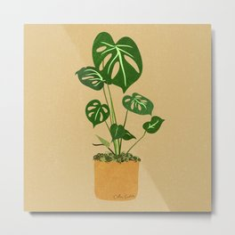 Monstera Philodendron Metal Print