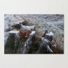 Stump & Frost Canvas Print