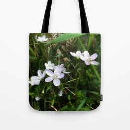 Spring Beauty 05 Tote Bag