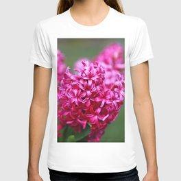 Hyacinths at spring T-shirt
