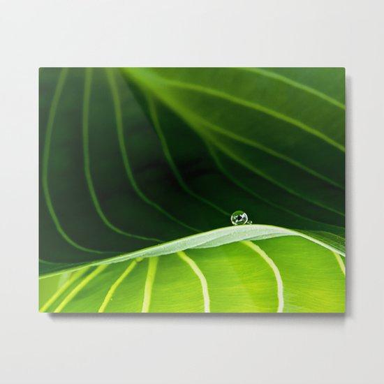 in green Metal Print