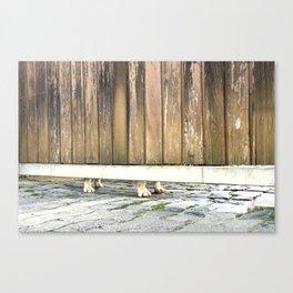 Paws Of A Waiting Bulldog Canvas Print