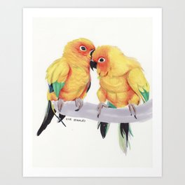Conure Love Art Print