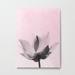 Lotus Flower | Pink Background Metal Print