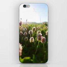 Close picture of Portulaca grandiflora iPhone Skin