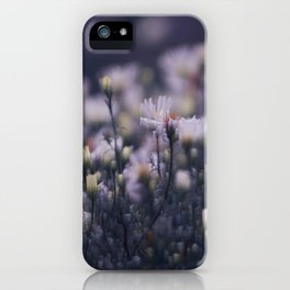 Dreamy daisies iPhone Case