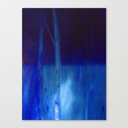 water landscape, nocturnal Canvas Print