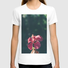 Hibiscus in Mexico T-shirt