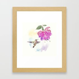 Hummingbird and fuchsia Flower watercolor painting Framed Art Print