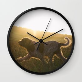 Brown Roan Italian Spinone Dog Wall Clock