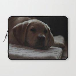 Cute puppy by Izaak Berkeley-Hurst Laptop Sleeve