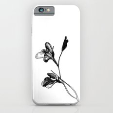 Gladiolus iPhone 6s Slim Case