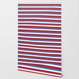 Panama Paraguay flag stripes Wallpaper