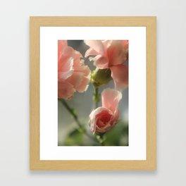 Spring flowers. Framed Art Print