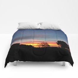 Lurid Dawn: 10.08.15 Comforters