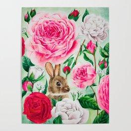 Brown Rabbit Poster