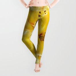 Luscious Lemon Leggings