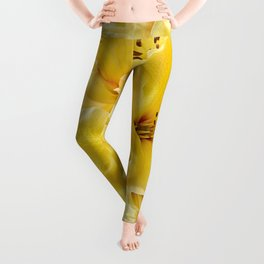 Luscious Lemon Leggings