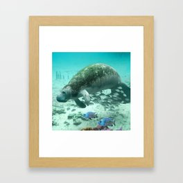 Large  Manatee Framed Art Print