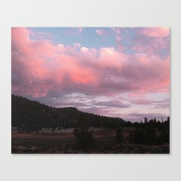 The Beauty of Long Days Canvas Print
