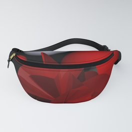 polynomial art -1- Fanny Pack