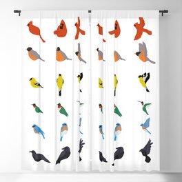 Rainbow of Birds Blackout Curtain